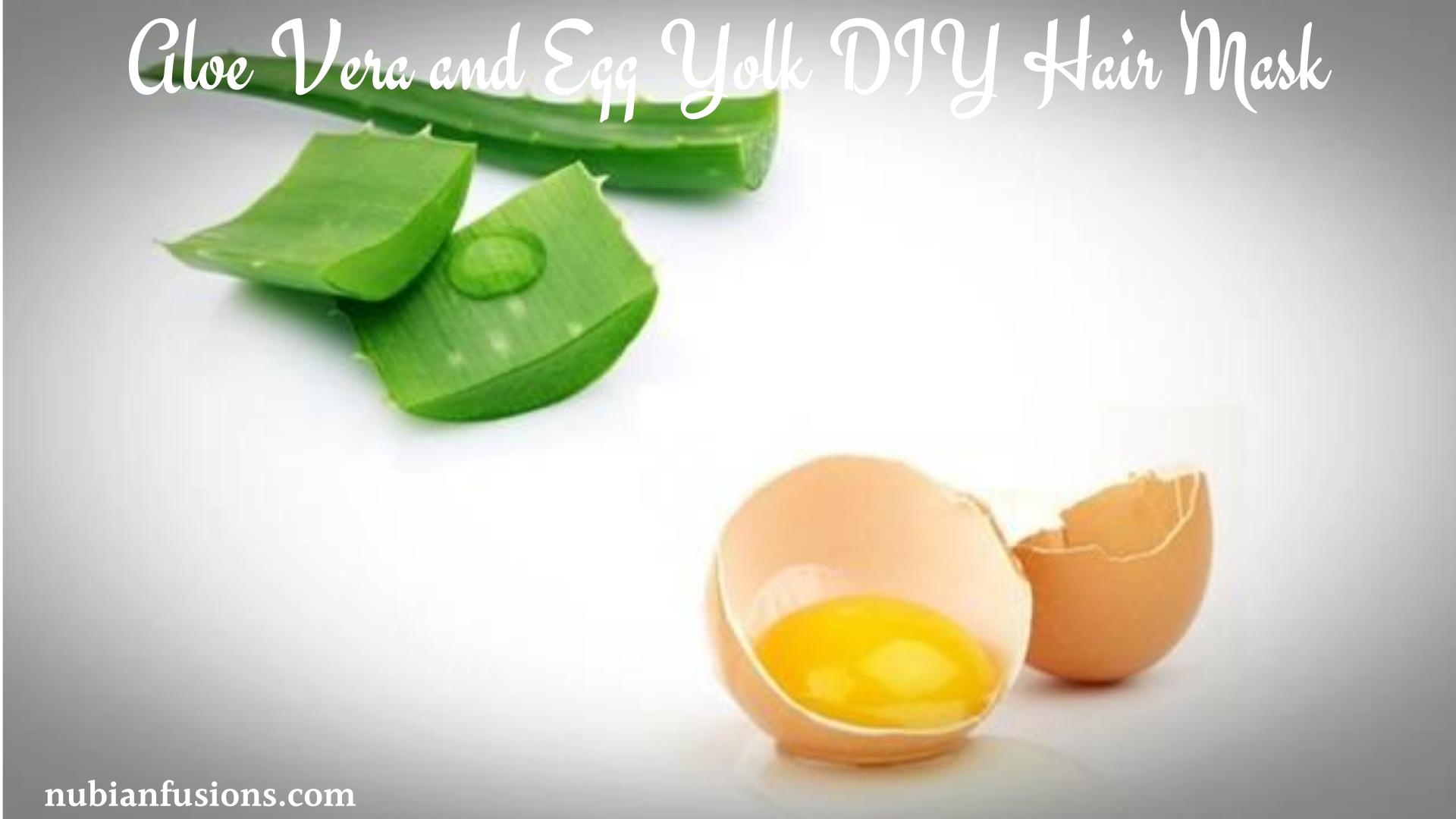 Aloe Vera and Egg Yolk DIY Hair Mask
